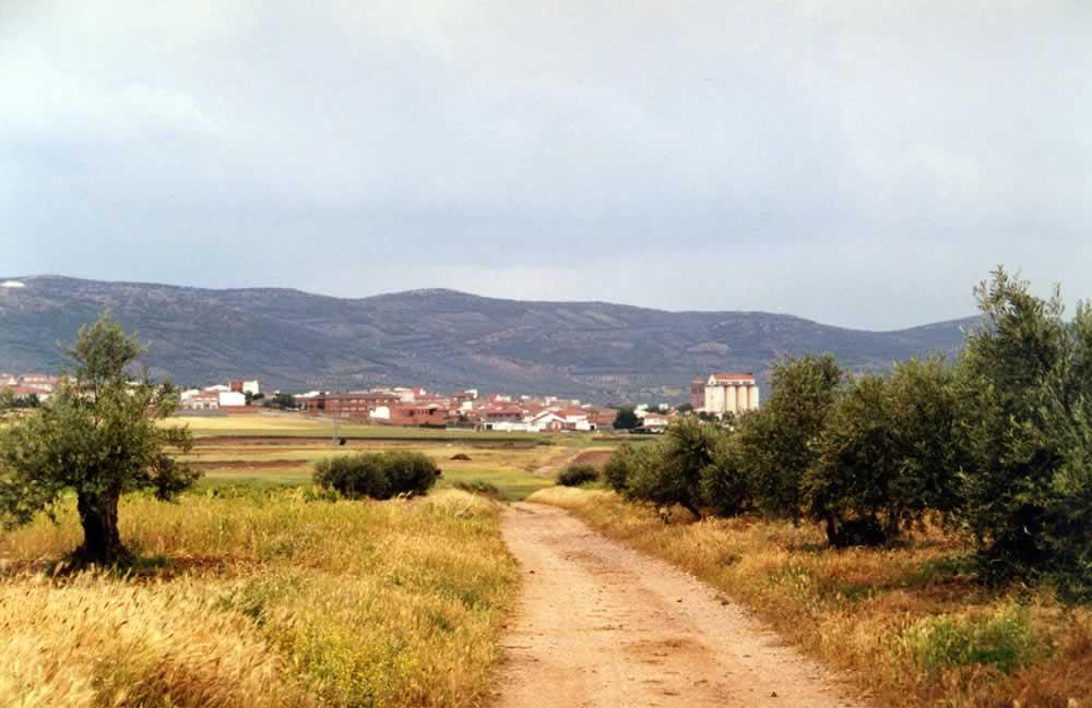 Vereda del Puerto de la Coja y Camino Real