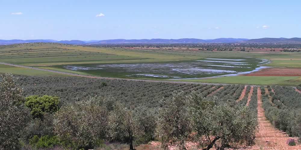Laguna de los garbanzos