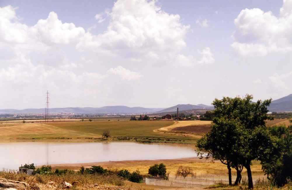 Vereda de Puertollano a su paso por la Laguna de Almodóvar